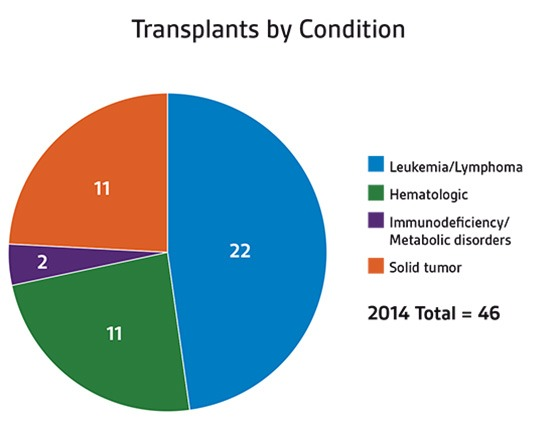 Stem cell transplants by condition