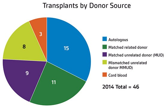 Stem cell transplants by donor source