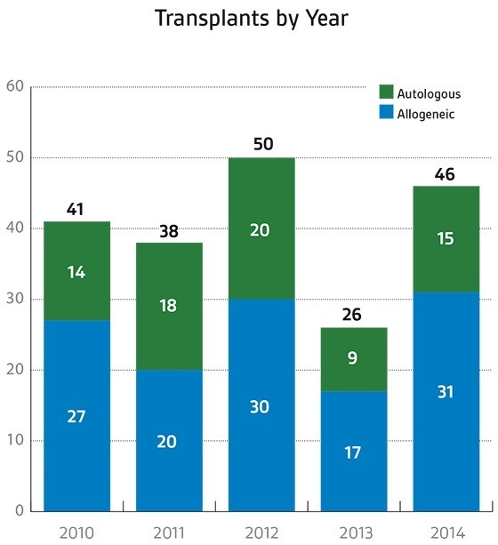 Stem cell transplants by year